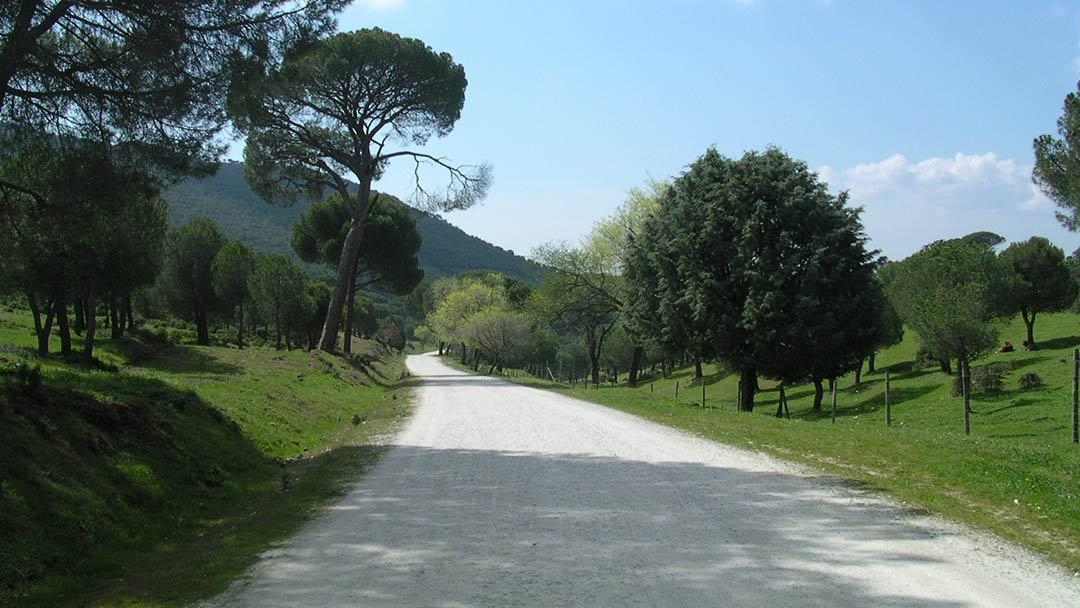 Camino de Monte Agudillo