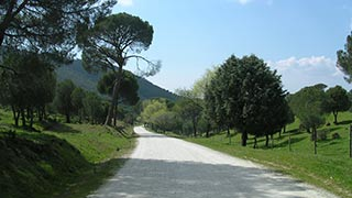Monte Agudillo