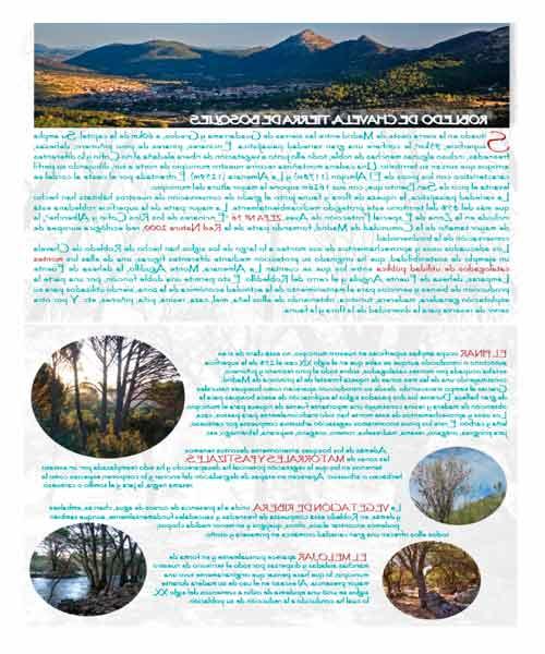 Folleto Tierra de Bosques